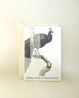 Pfauen-Glückwunschkarte