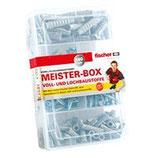 Aktion 2017 fischer Meister-Box SX mit Schrauben (160-Teilig)