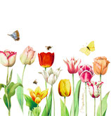 """Servietten """"Tulpen"""" (20 St.) GartenLiebe (M. Bastin)"""