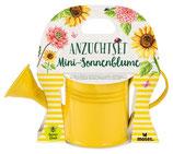 Blatt & Blüte Mini-Sonnenblume in Gießkanne