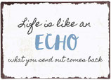 Life is like an echo