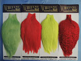 Whiting American Rooster Cape Grizzly