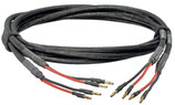 Cr Tech Lautsprecher Kabel LS 25s Mk II