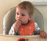 Babyled Weaning Class Reservation