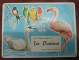 JEU DE CARTES Les Oiseaux