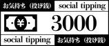 商品名 投げ銭(お気持ち)3000円