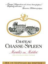2011 Château Chasse-Spleen - 0,75l