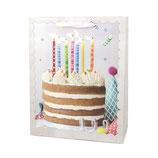 """00 Пакет подарочный """"С Днем Рождения. Торт"""", 1 шт."""