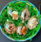 Osterei gefüllt mit 20g Leckerlis