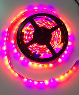 1 Meter Growlicious LED Strip