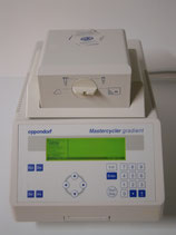 Thermocycler Eppendorf Mastercycler gradient
