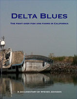 Delta Blues DVD