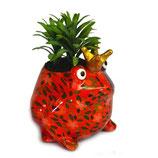 Frosch rot mit Blättern