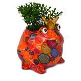 Frosch orange mit Blumen