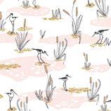 wetlands, pink