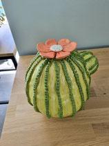 Cactus met bloem à la KuCo