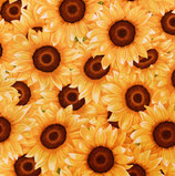 Sunny Sunflowers PW