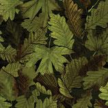 Forest Foliage Deep Forest, Nature Walk, Kanvas Studio, 12305950718