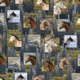 Pferde, Running Wild, Quilting Treasures, 03291550615