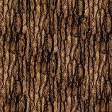 Bark Texture Acorn, Nature Walk, Kanvas Studio, 12325950718