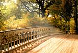 Meditation Hellwissen: Begegnung mit dem Höheren Selbst