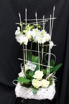 Composition orchidées