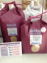 魚沼産コシヒカリ1等28年産玄米5kg