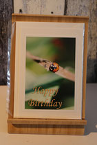 Grußkarte Geburtstag Käfer