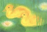 """Kinderpostkarte """"Zwei Enten im Teich"""""""