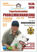 Tagesfachseminar PROBLEMBEHANDLUNG