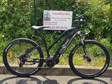 VTT VAE Cycle Denis Rider Sport (neuf)