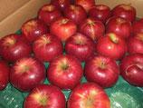 商品名竹嶋有機農園紅玉 10月中旬から  B、C級品バラ入りの発送は、来年1月からです。