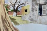 Baobab de Gorée