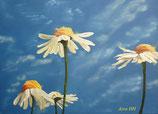 Natur Wind Spuren