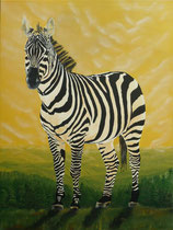 Natur Zebra Spuren