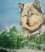 Natur Wolf Spuren