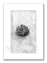 Kunstkarte Versteinerter Seeigel Artikelnr. s103