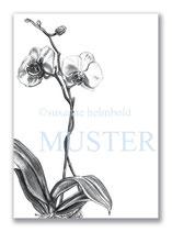 Kunstkarte Orchidee Artikelnr. b108