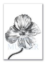 Kunstkarte Mohnblüte Artikelnr. b102