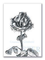 Kunstkarte Rose Artikelnr. b107