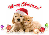 Weihnachten 24