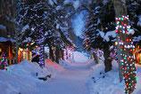 Weihnachten 119