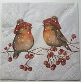 Vögel auf Ast