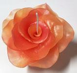 Rosenblüte Hell- / Dunkelorange