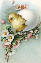 Ostern 13