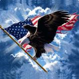 Adler landet auf Flagge