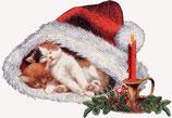 Weihnachten 13
