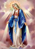 Maria 12