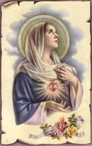 Maria 7