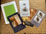 Reading, inkl. Meditationen/Affirmationen